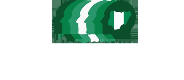 Lead Nigeria